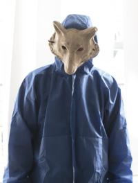 apollo-phox-1