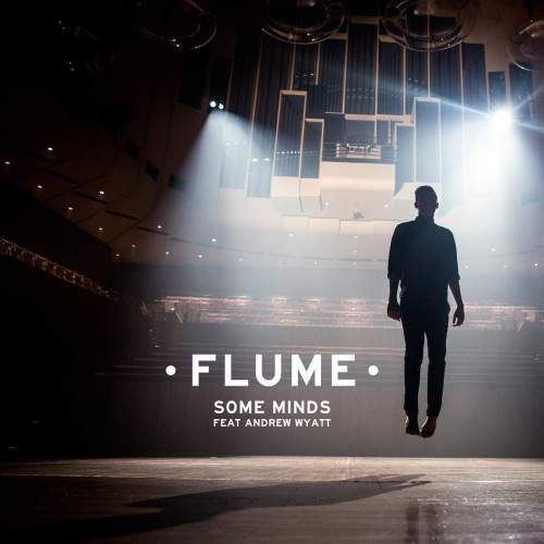 flume-some-minds-andrew-wyatt