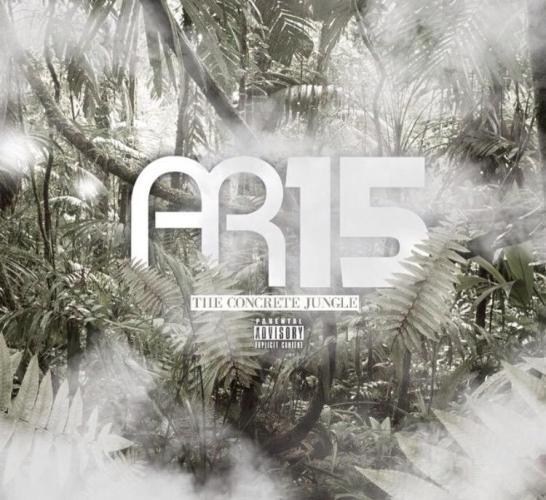 AR15-concrete-jungle