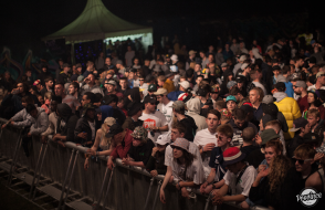 The Festival Crowd